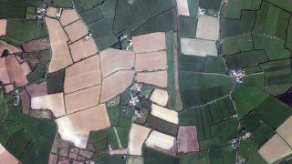 ILAS Field Taghmon Ireland