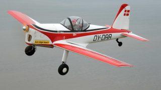 Vintage Aerobatic Championships