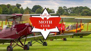 Gathering of Moths
